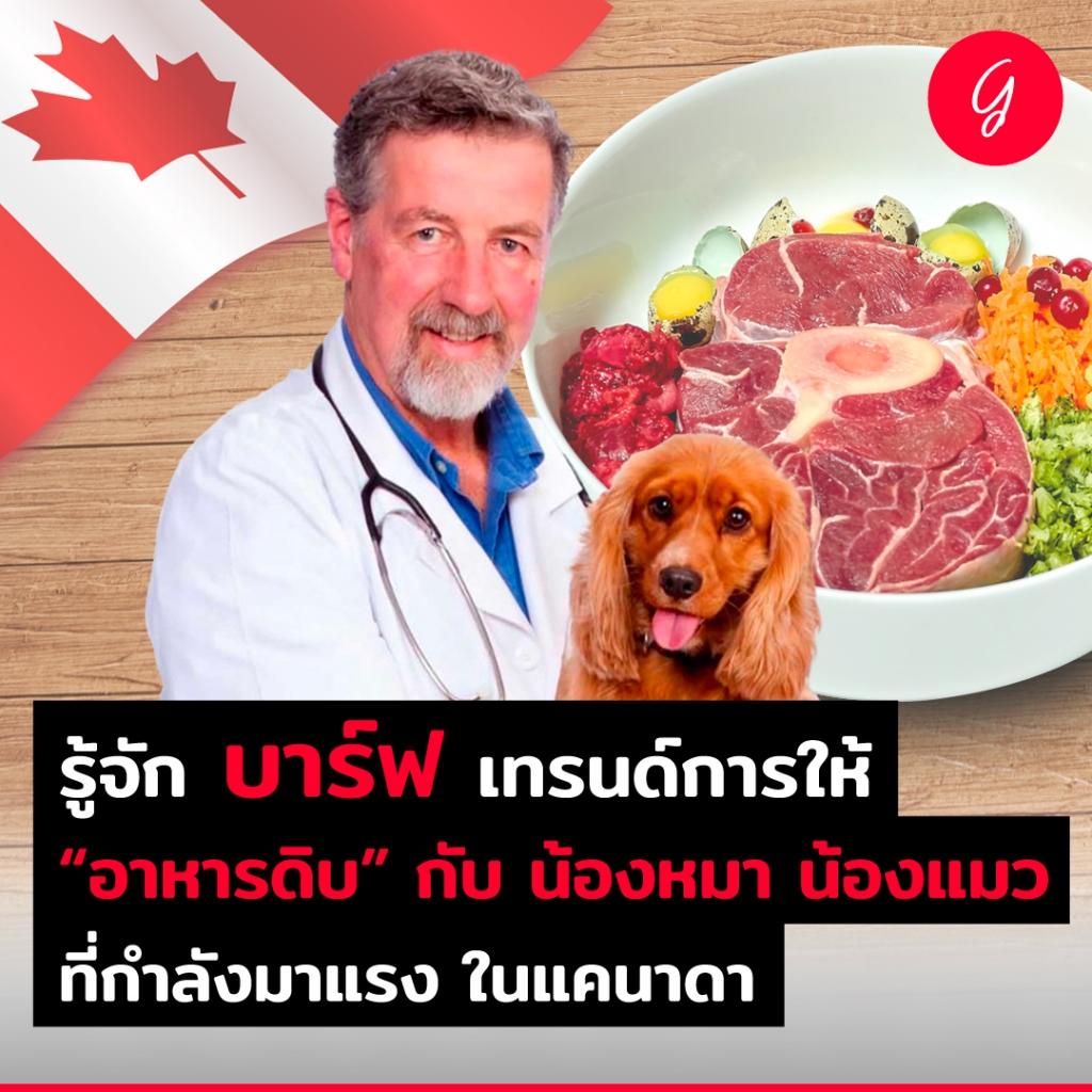 รู้จัก บาร์ฟ เทรนด์การให้อาหารดิบ กับน้องหมาน้องแมว ที่กำลังมาแรง ในแคนาดา